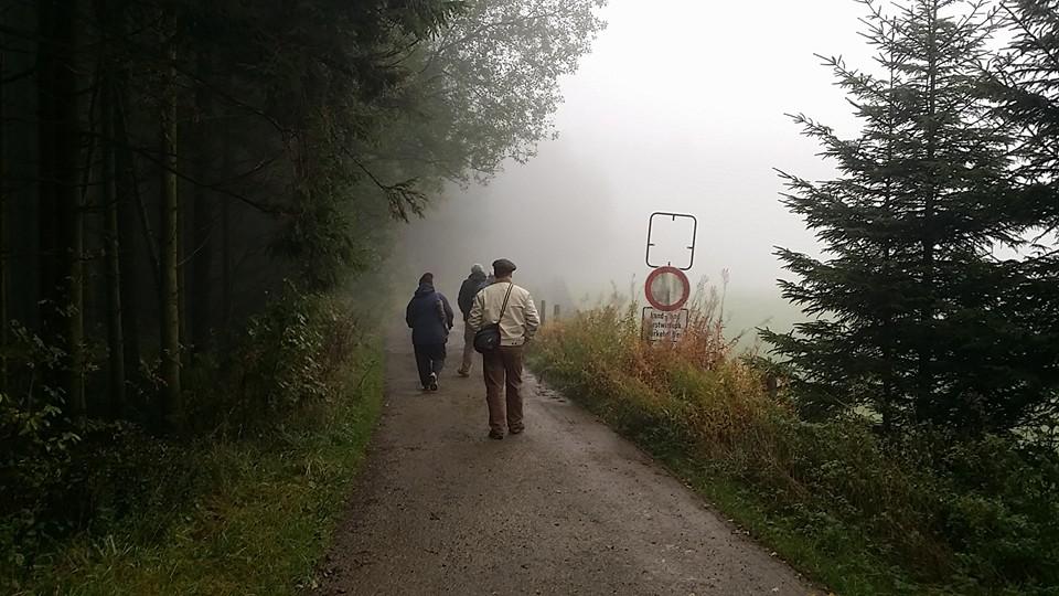 Fog near Hollerath