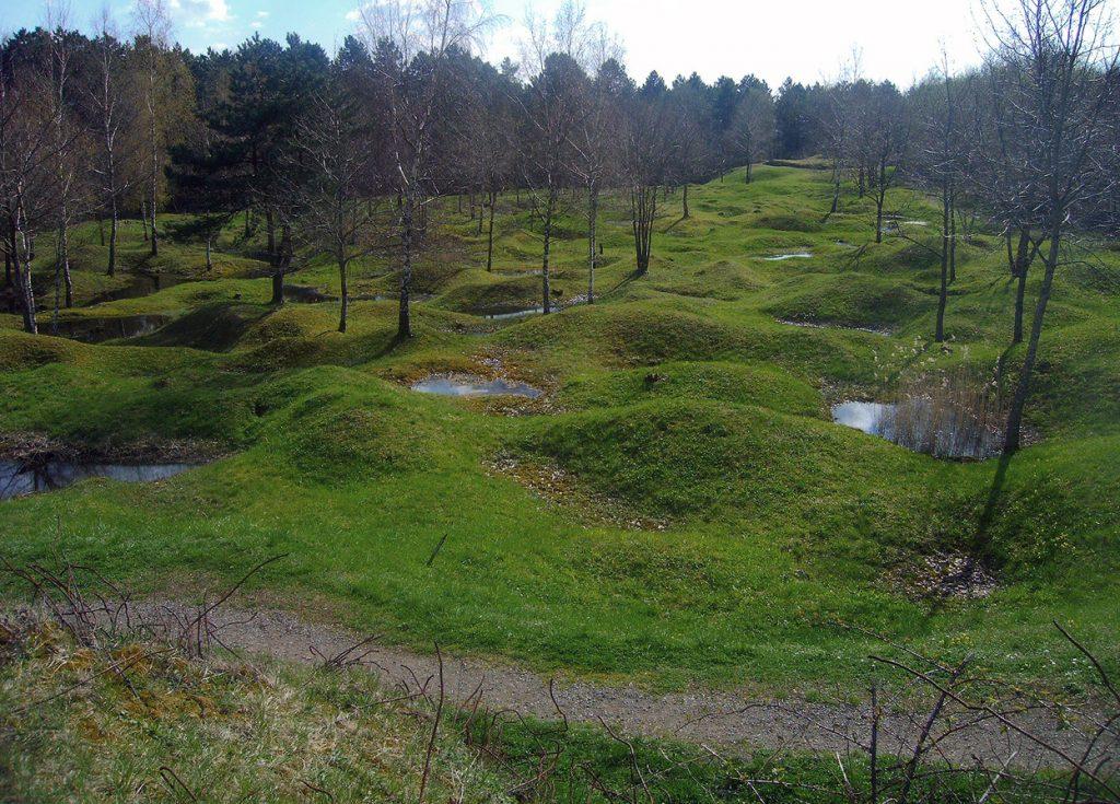 Verdun crater field